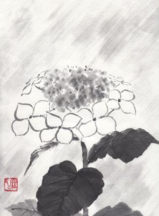 ajisai_rain.jpg