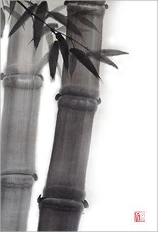 bamboo_hakeblog.jpg