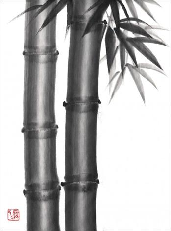 bamboohake.jpg