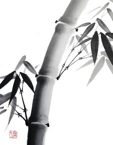 bambooschool.jpg