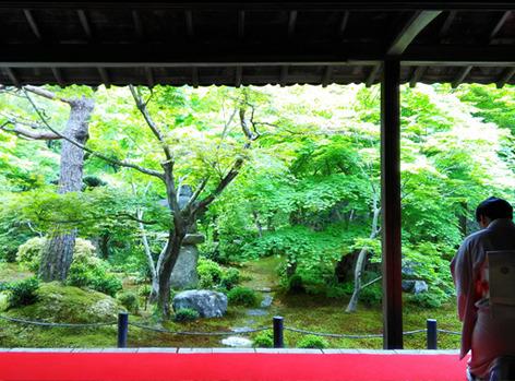 enkohji10.jpg