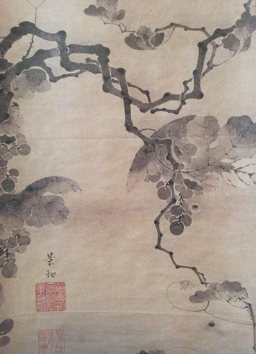 grape_keiwa.jpg