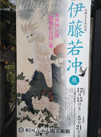jakucyu_kouki.jpg