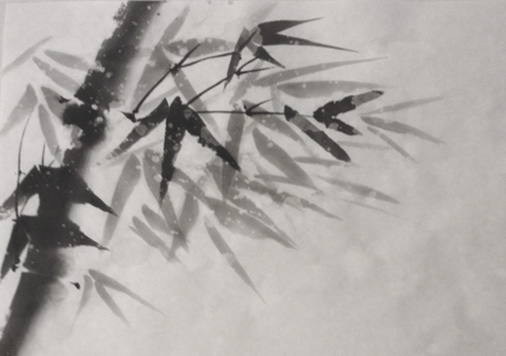 snow-bamboo2.jpg