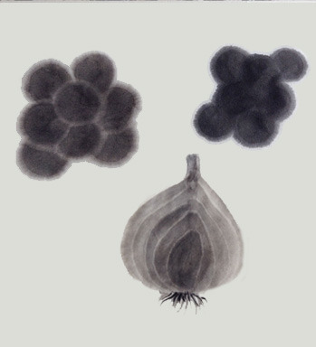 sujime-sample.jpg