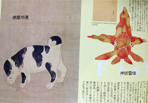 waraku_dogfish.jpg