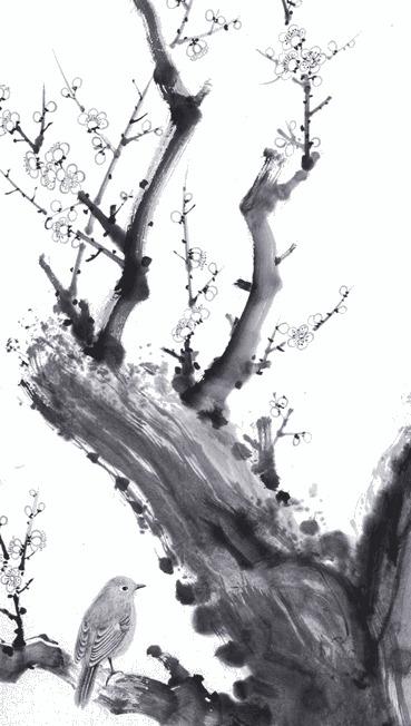 whiteplum.jpg
